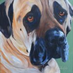 Mastiff SugarApril18 2016
